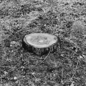 Milieuvriendelijke gedenkplaat bij een graf